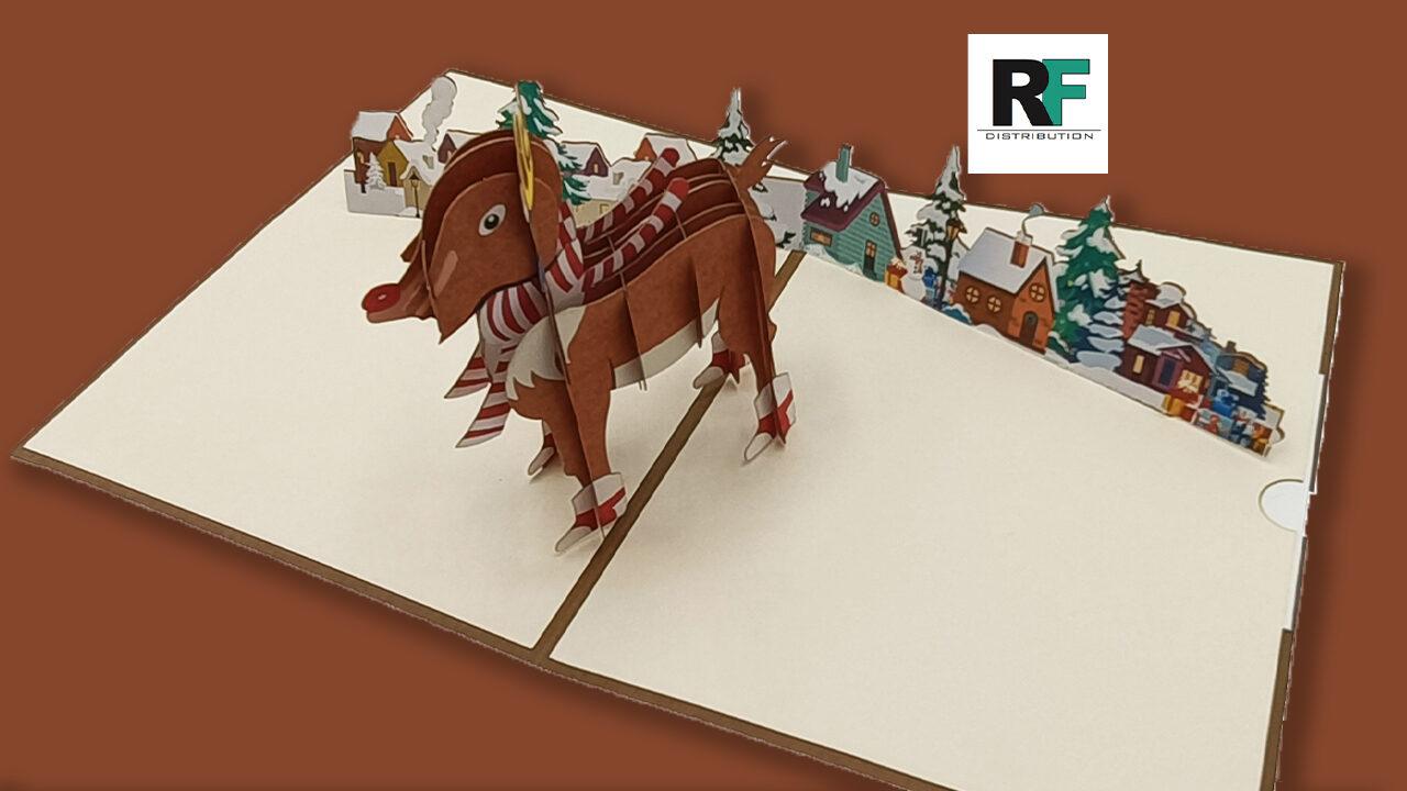 rfdistribution-festa-bigbuyer